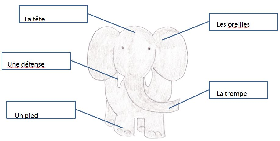 Un lphant a trompe parentteacher intro sensible money worksheet solution elephant parts ccuart Image collections